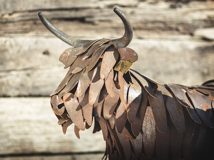 Highland Coo - ArtFe Sculpture